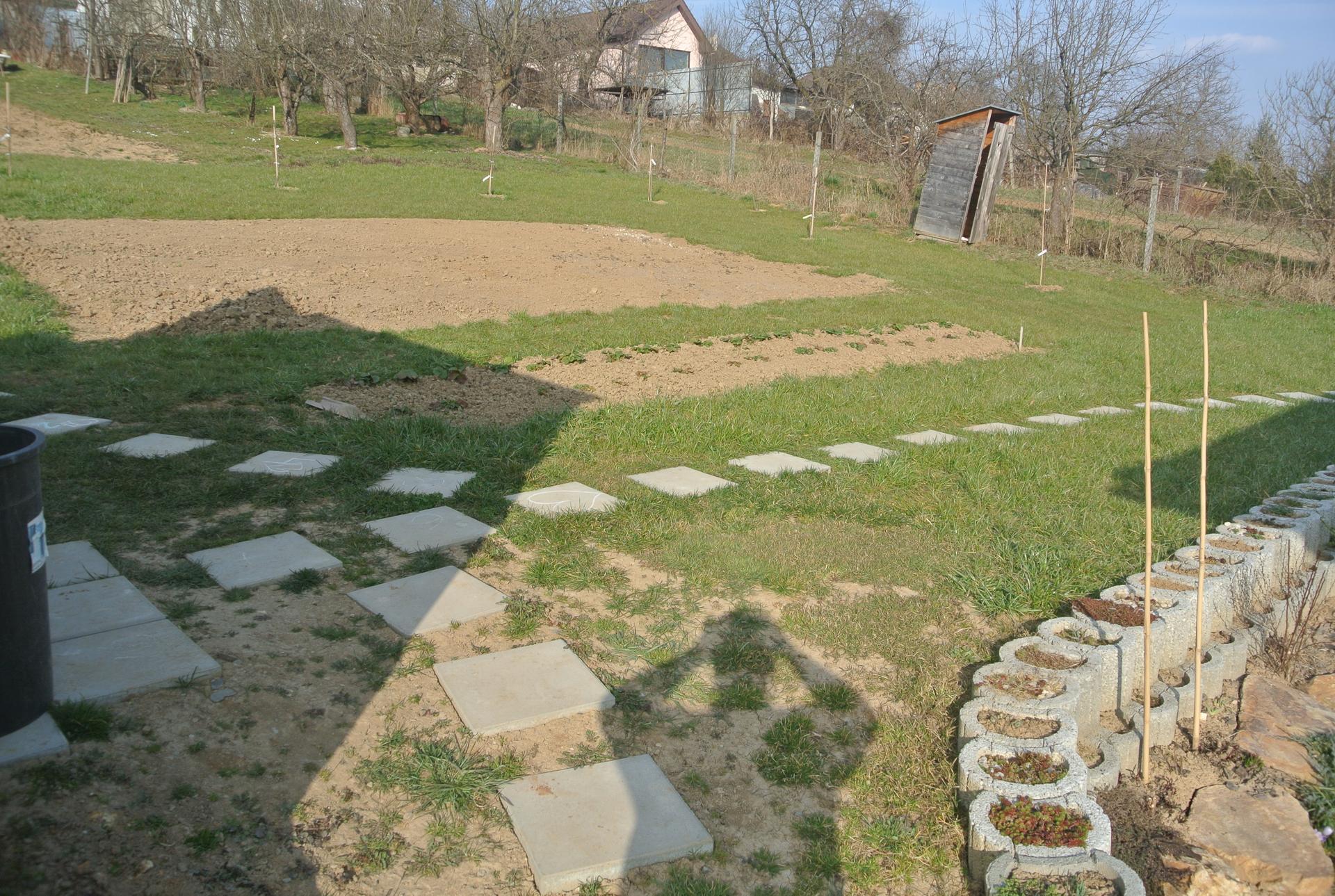 Budujeme okrasnú aj úžitkovú záhradu - Jahody ako-tak poriadené, miesto na sadenie nachystané.