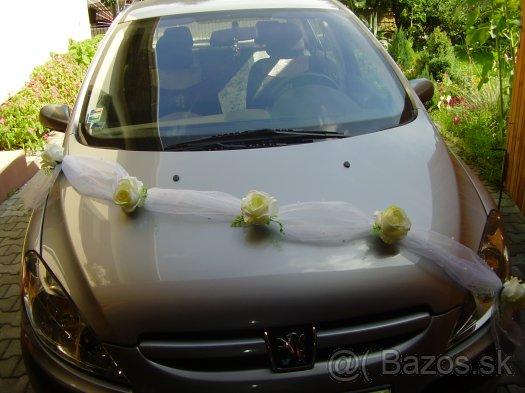 Sen sa stáva skutočnosťou :) - takéto by som chcela na auto, jednoduché ale pekné :)
