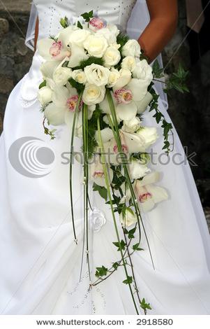 Sun a Čert 13.8.2011 - A takhle snad bude vypadat moje kytka. Ještě tam budou bílé frézie a ty orchideje budou taky celé bílé
