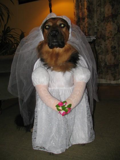 Trochu jiné svatební fotky - od rats - díky ;-)