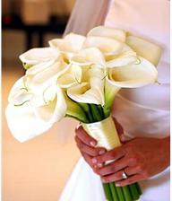 o svatební kytičce mám docela jasno, určitě to budou kaly.