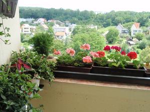 zmes balkonoviek