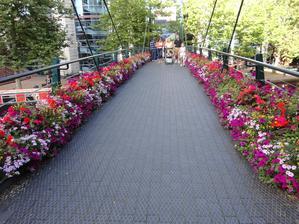 Birmingham..vela kvetov,vyhovuje klima