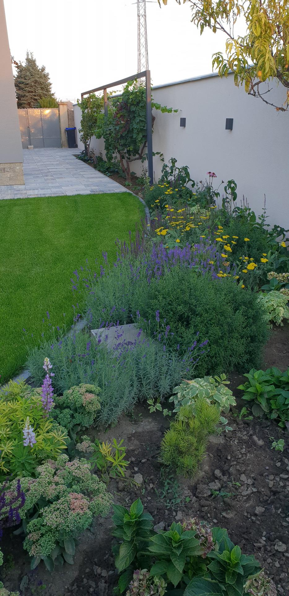 Dvor a záhradka - Obrázok č. 7