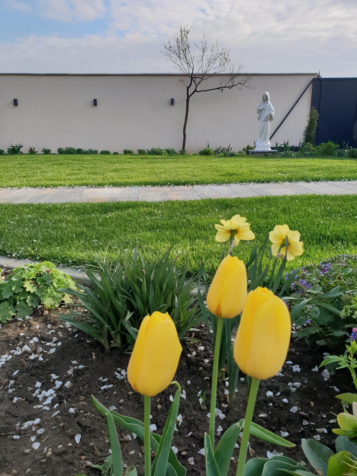 Dvor a záhradka - Obrázok č. 8