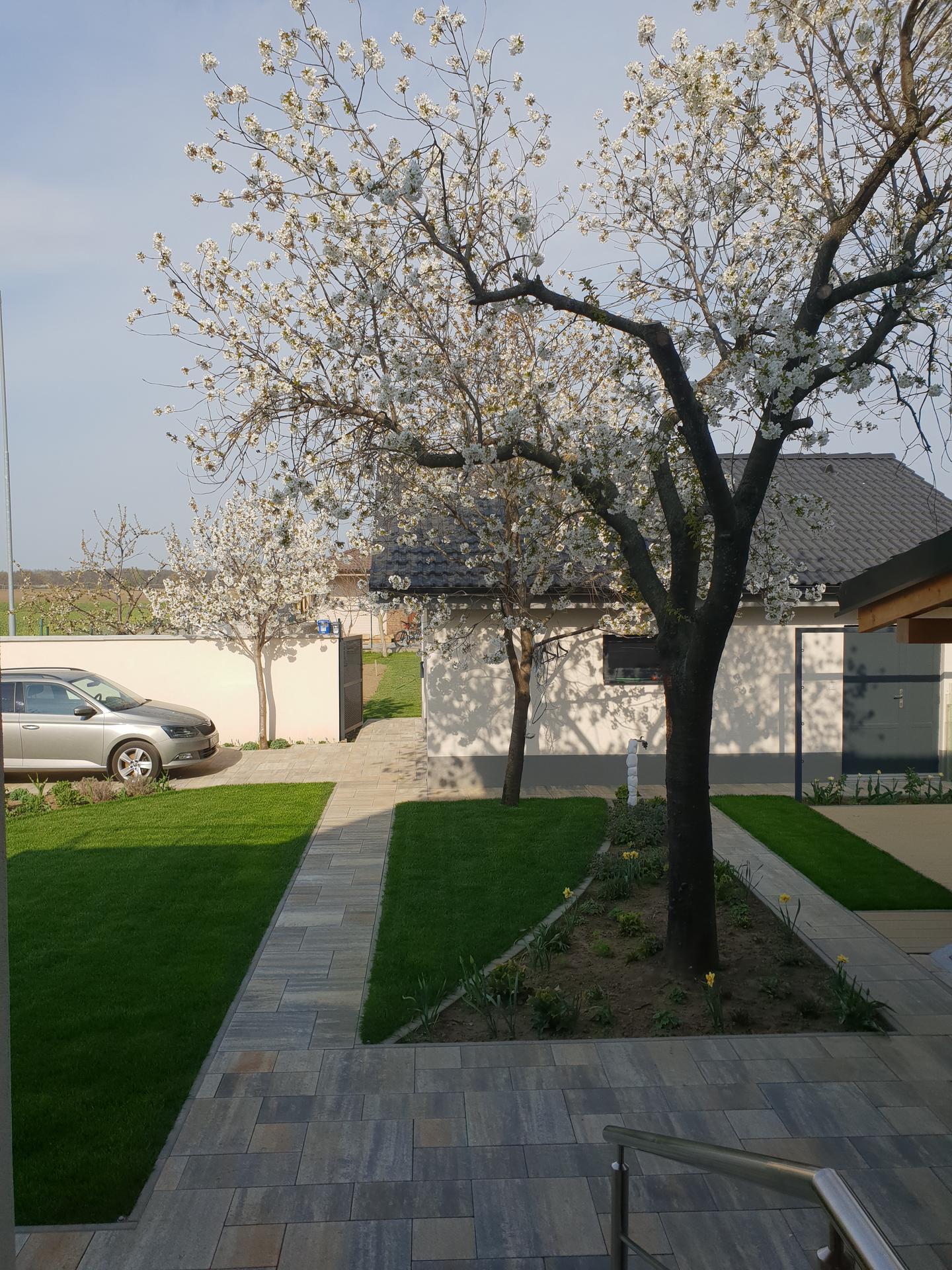 Dvor a záhradka - Obrázok č. 10