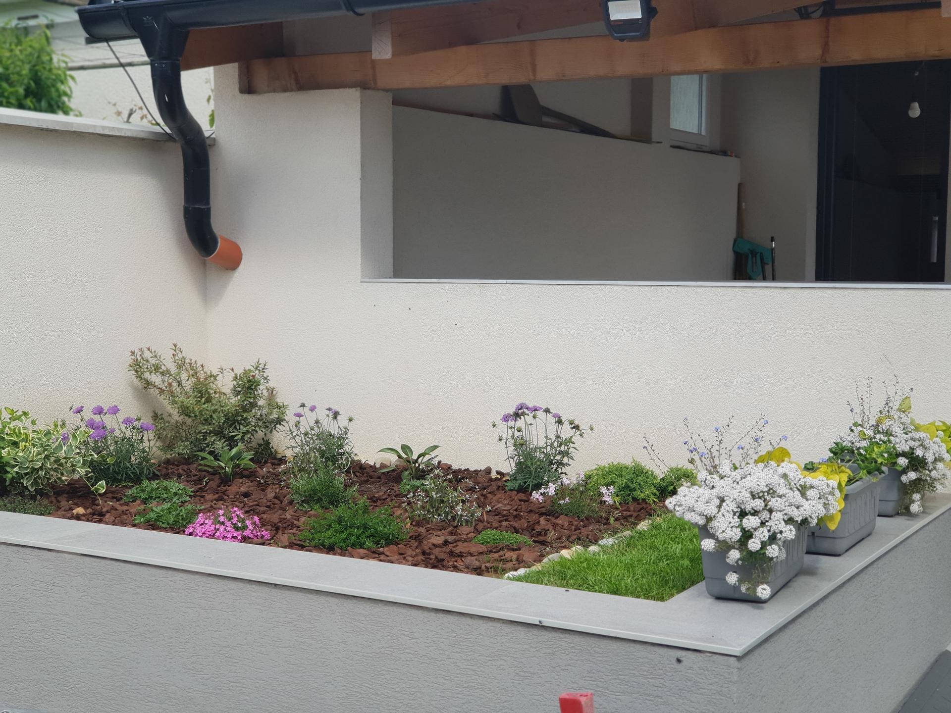 Dvor a záhradka - Obrázok č. 17