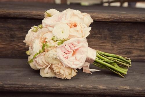 My wedding in peach - Obrázek č. 24