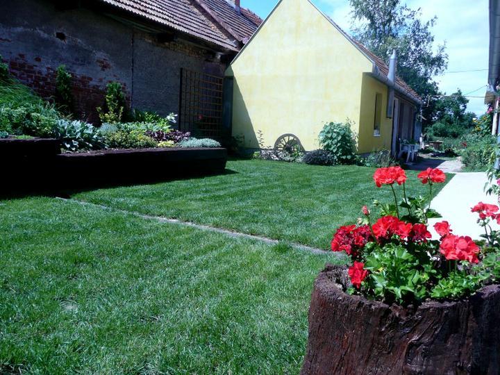 Naša debutová záhradka - Obrázok č. 5