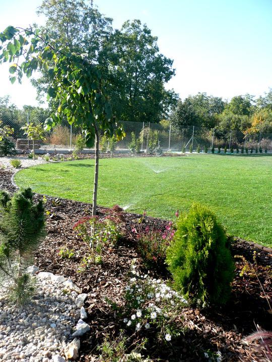 Záhrada s veľkou skalkou - Obrázok č. 24