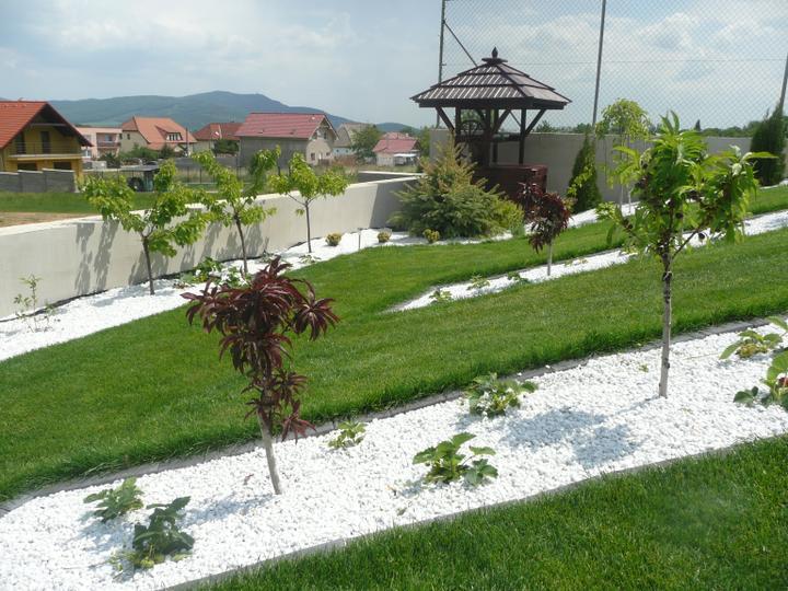 Ovocna zahradka - Obrázok č. 6
