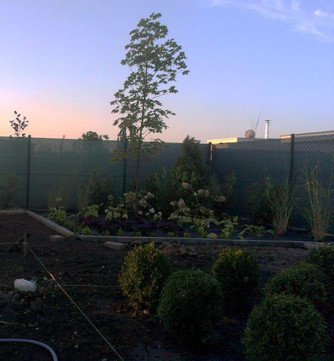 Dalsia zahradka - Obrázok č. 21