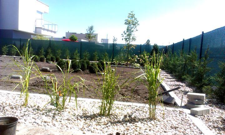 Dalsia zahradka - Obrázok č. 24