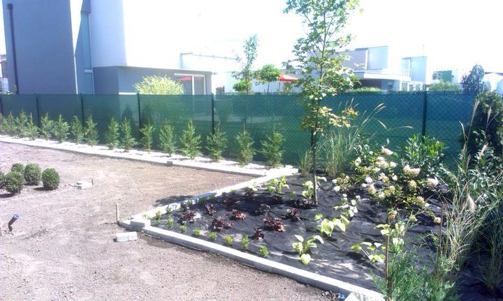 Dalsia zahradka - Obrázok č. 25