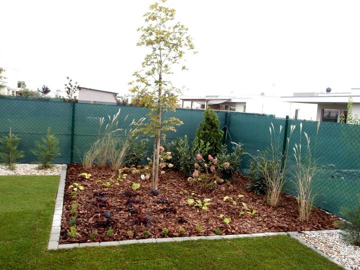 Dalsia zahradka - Obrázok č. 40
