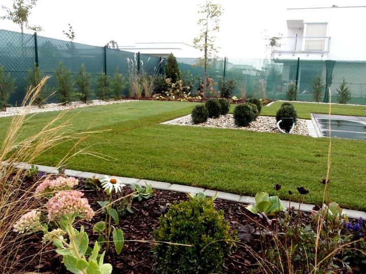 Dalsia zahradka - Obrázok č. 41