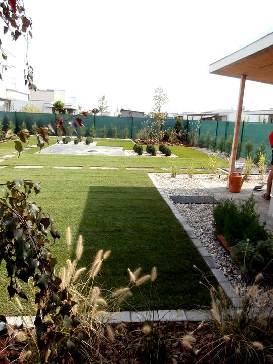 Dalsia zahradka - Obrázok č. 44