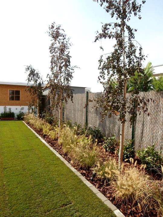 Dalsia zahradka - Obrázok č. 46