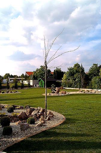Zahradka4./2014 - Obrázok č. 13
