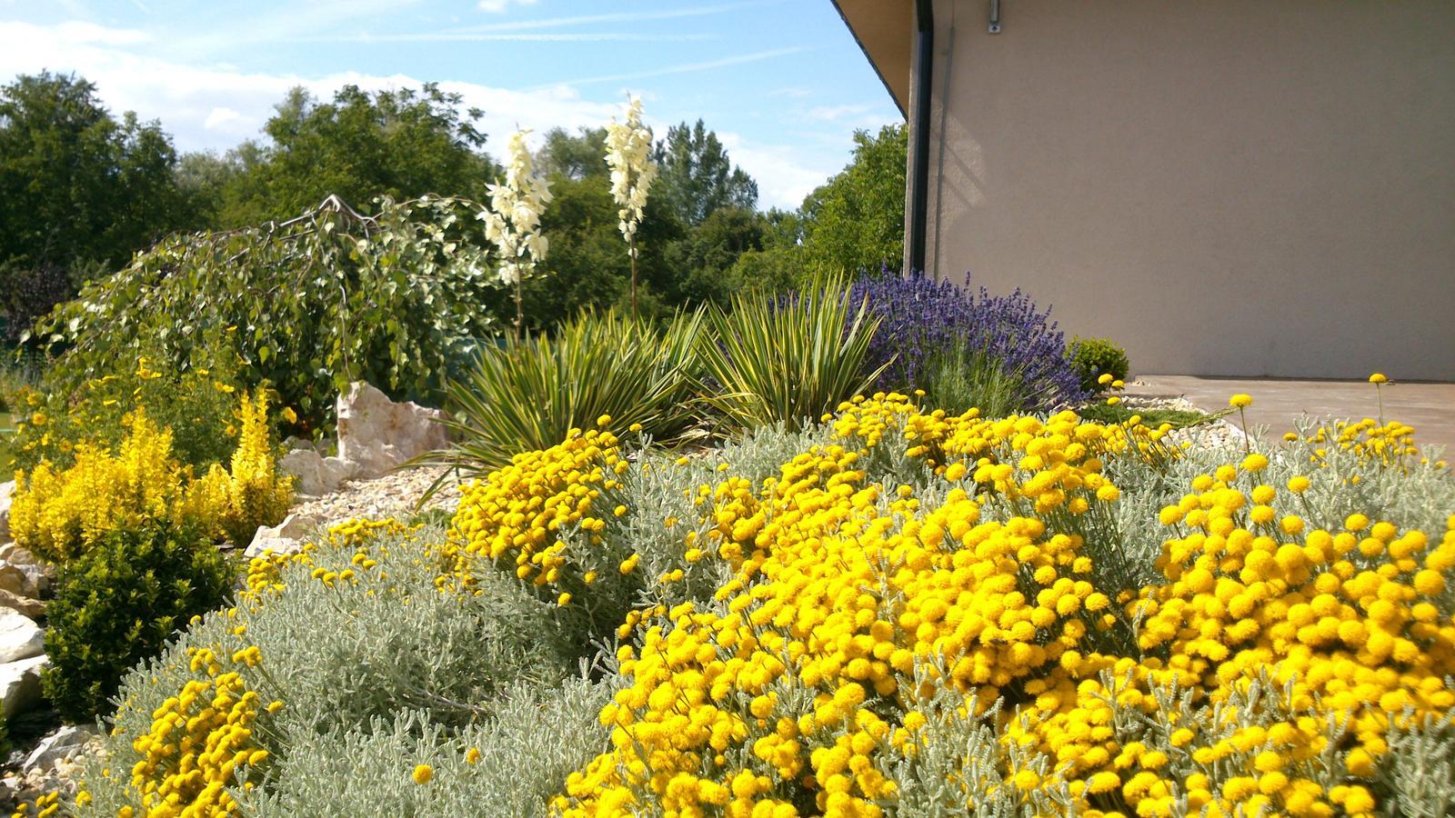 Záhrada s veľkou skalkou - Obrázok č. 45