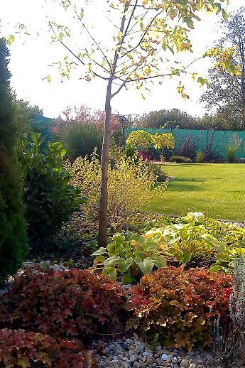 Záhrada s veľkou skalkou - Obrázok č. 50