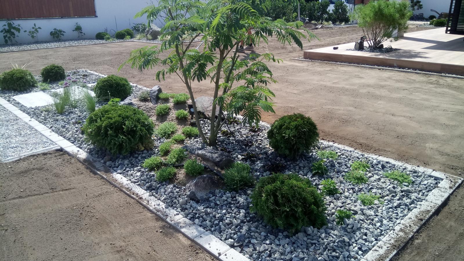 Zahrada 2017 - Obrázok č. 3