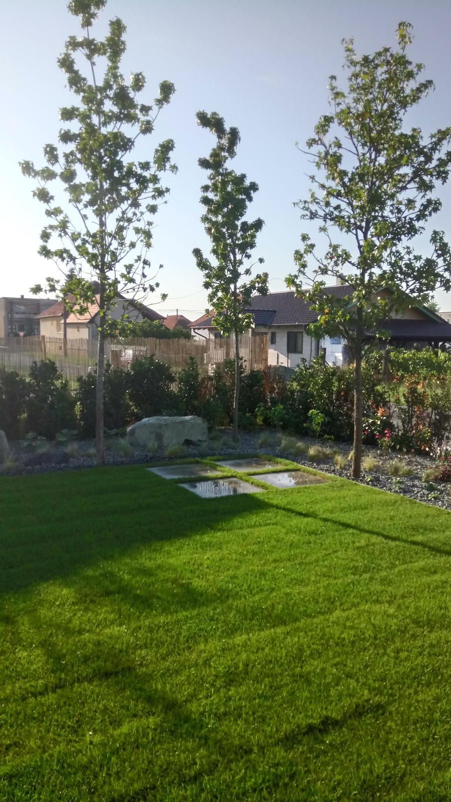 Zahrada 2017 - Obrázok č. 21