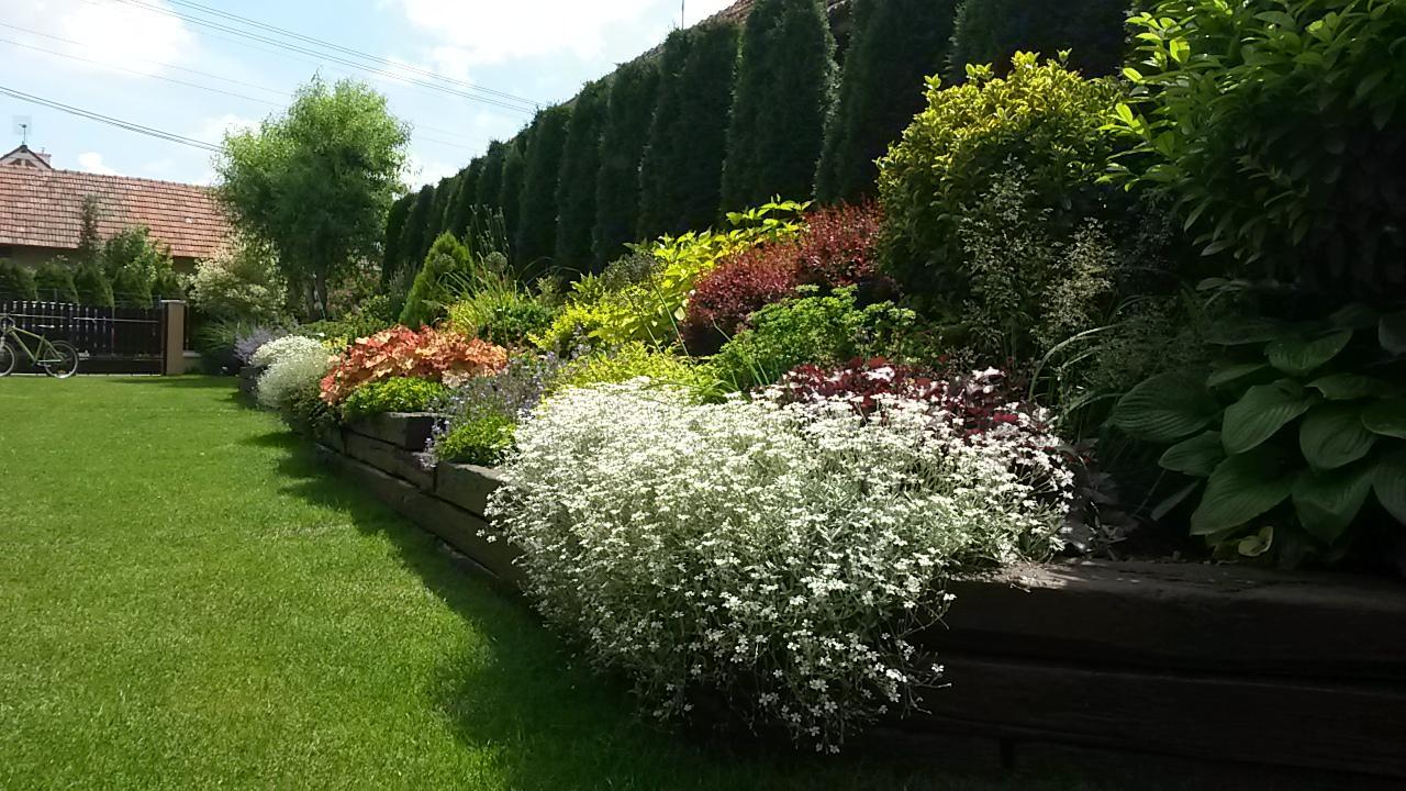 Naša debutová záhradka - Obrázok č. 99