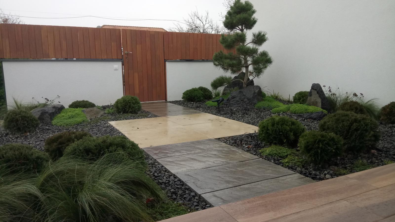 Zahrada 2017 - Obrázok č. 28