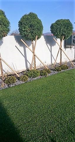 Zahrada 2017 - zahradka potrebuje cas :)