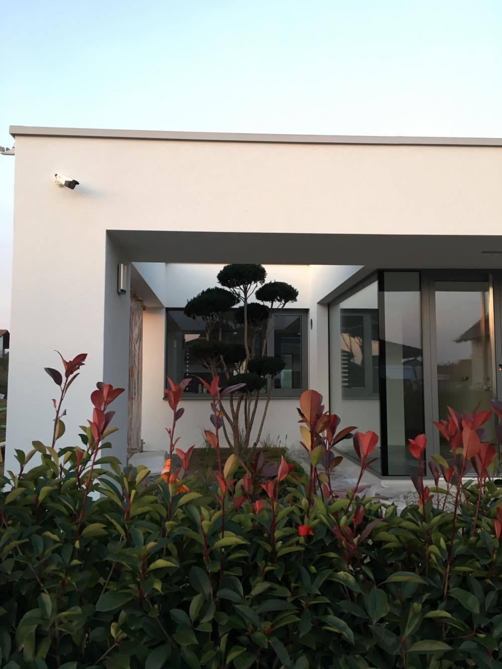Zahrada 2017 - Obrázok č. 19