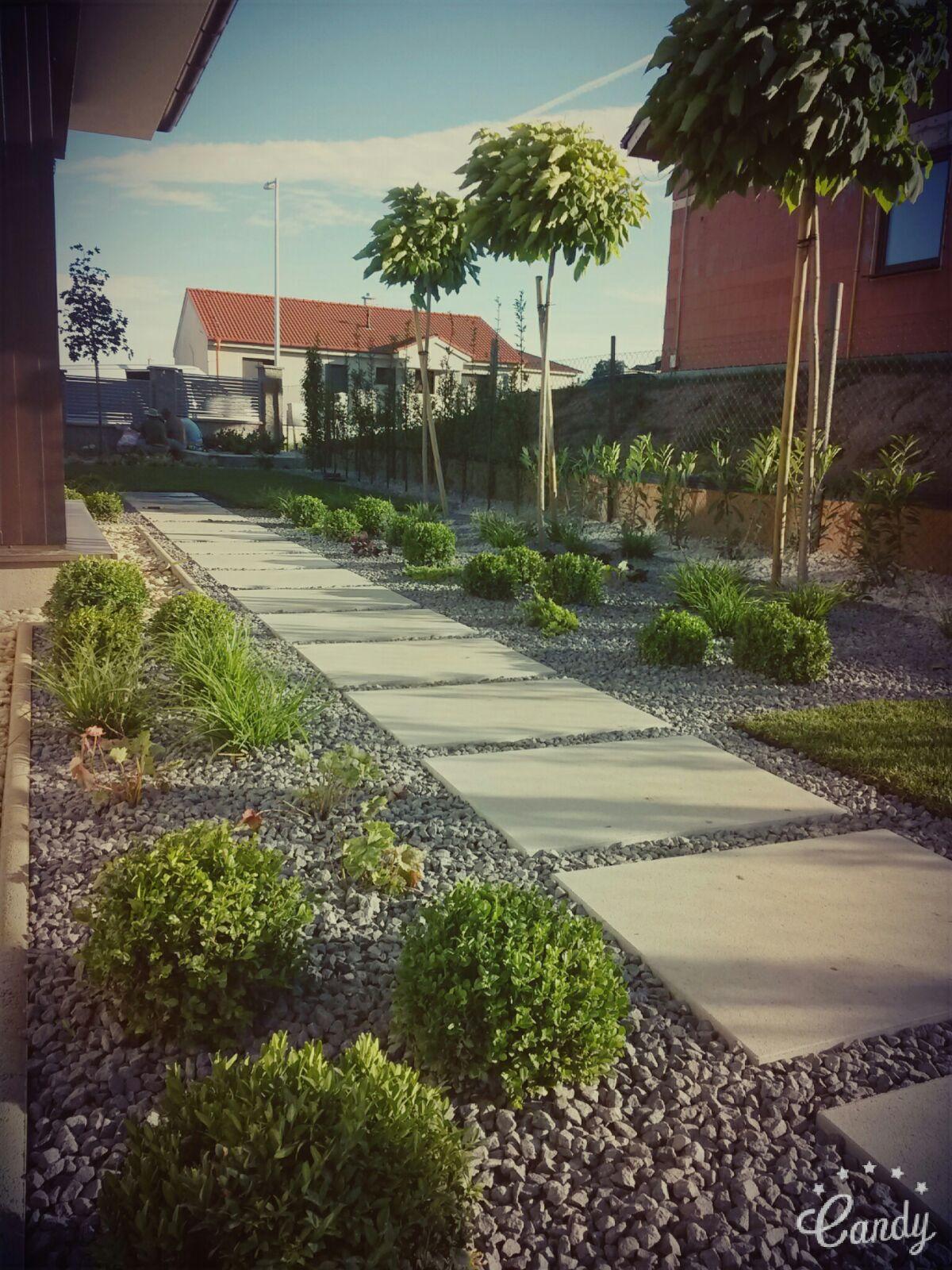 Zahrada 2016 - Obrázok č. 4