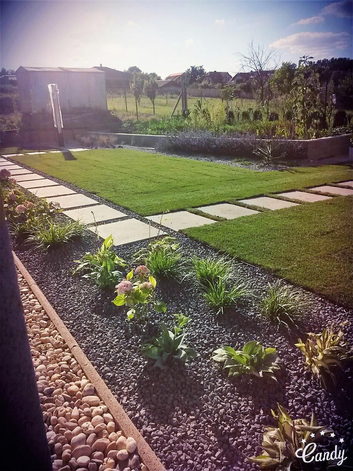 Zahrada 2016 - Obrázok č. 5