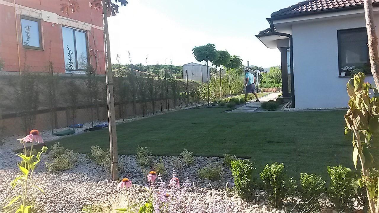 Zahrada 2016 - Obrázok č. 6