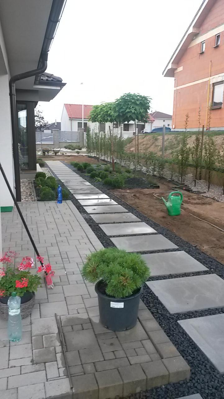 Zahrada 2016 - Obrázok č. 7