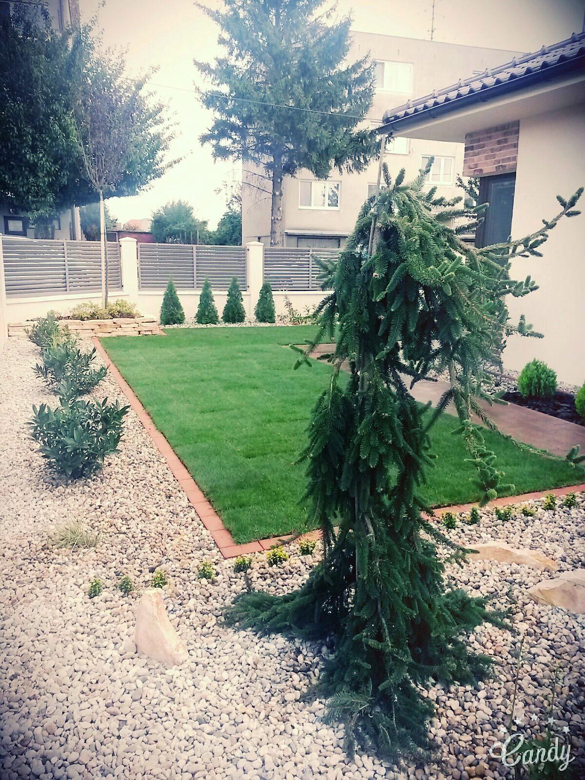 Zahrada 2016 - Obrázok č. 2