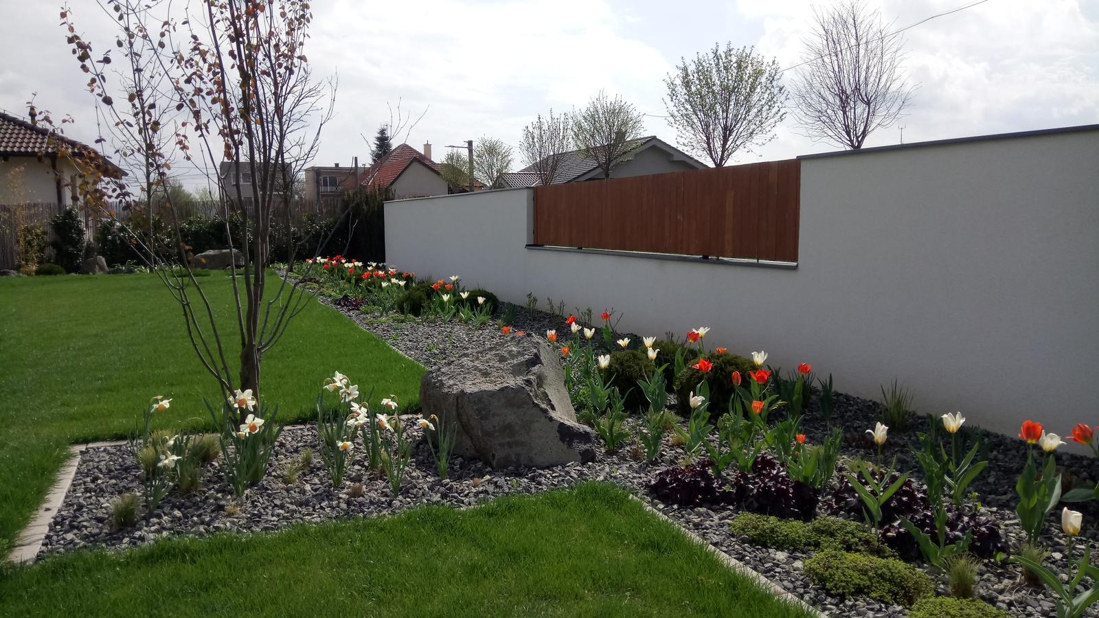 Zahrada 2017 - Obrázok č. 38