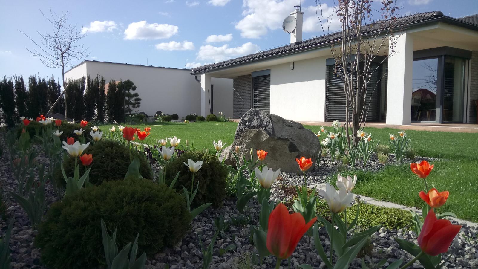 Zahrada 2017 - Obrázok č. 40