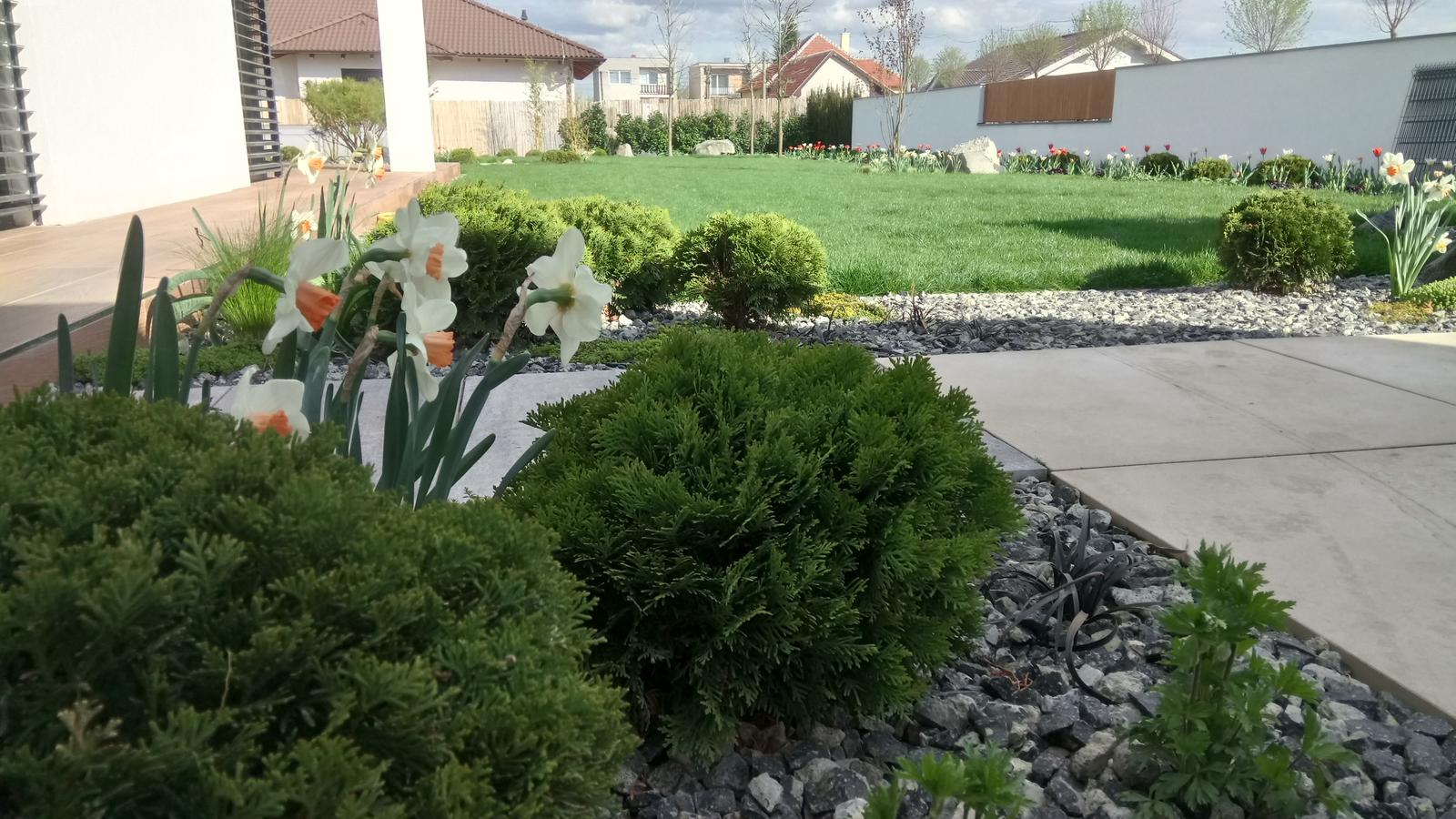 Zahrada 2017 - Obrázok č. 44