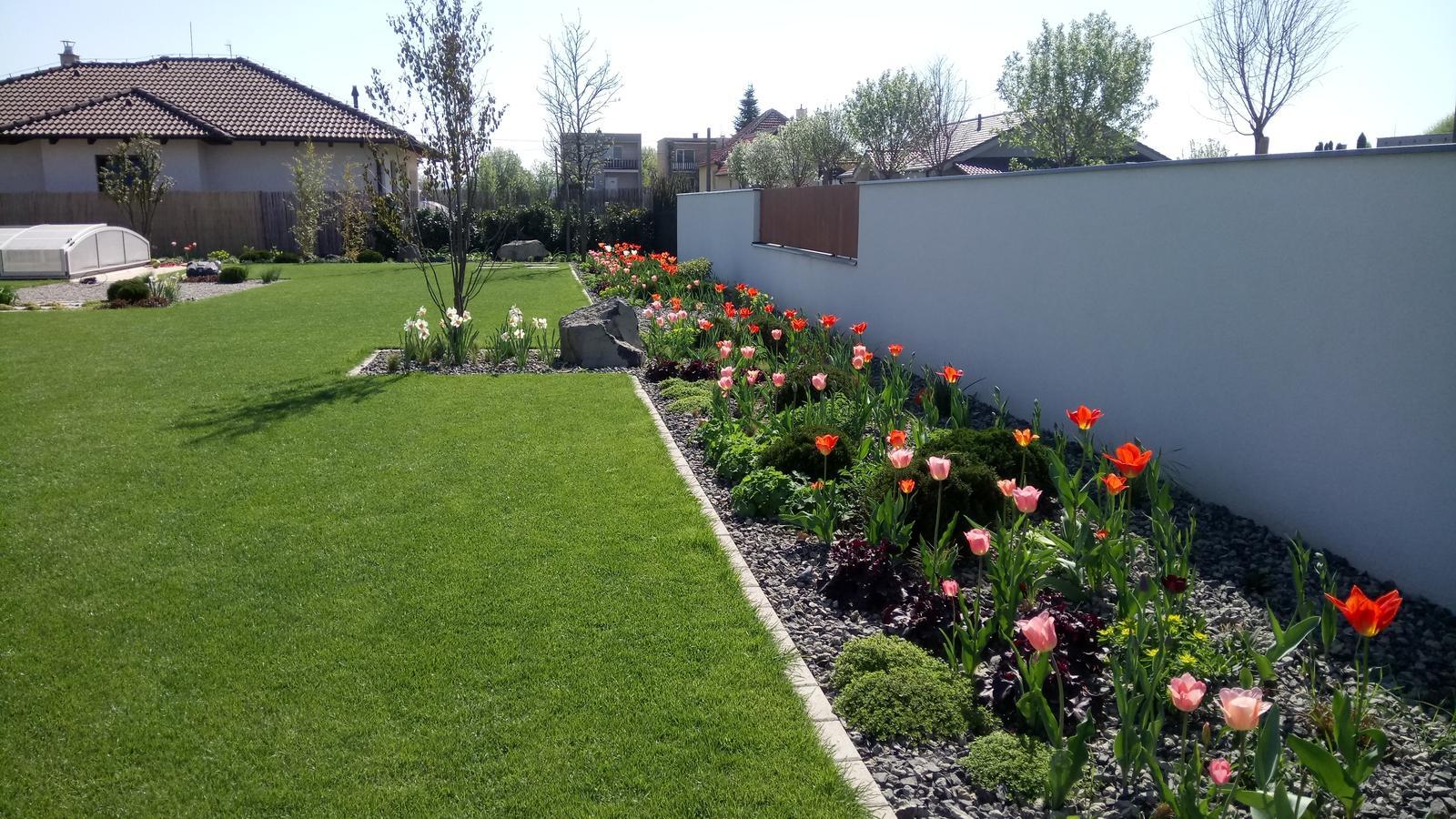 Zahrada 2017 - Obrázok č. 45