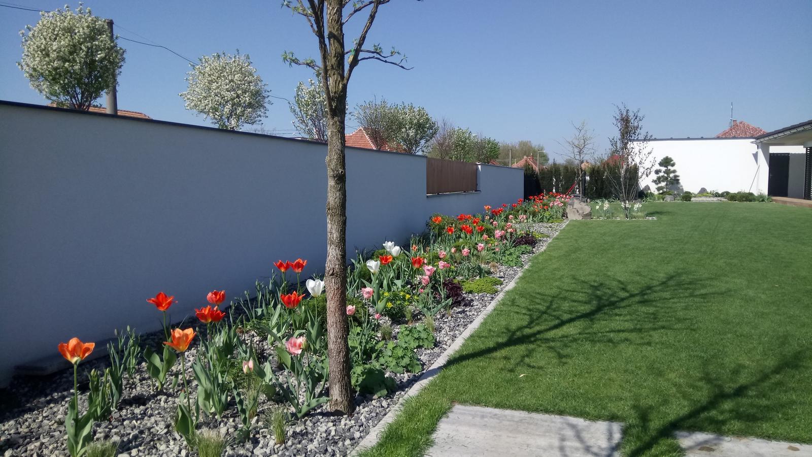 Zahrada 2017 - Obrázok č. 47