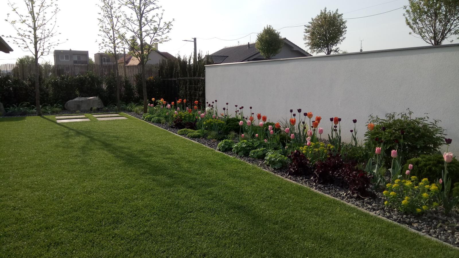 Zahrada 2017 - Obrázok č. 51