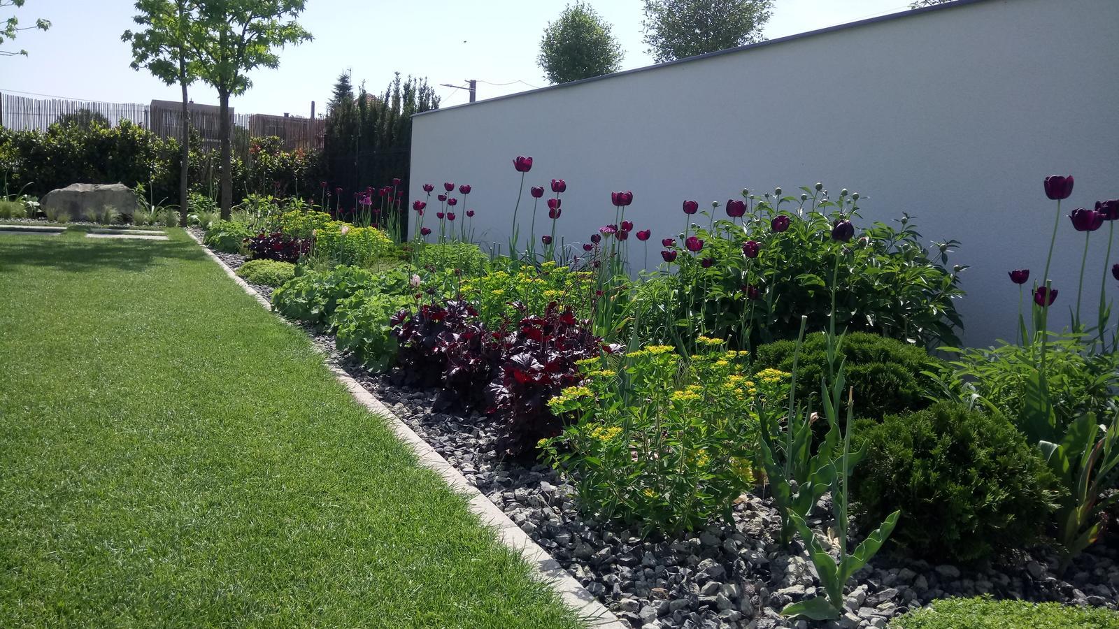 Zahrada 2017 - Obrázok č. 52