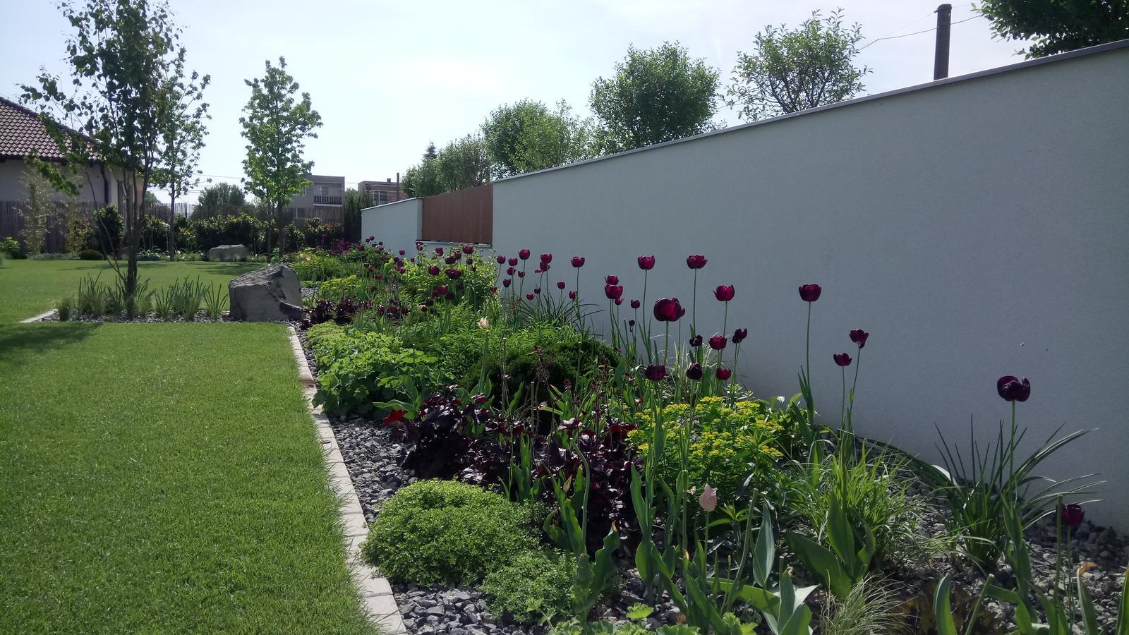 Zahrada 2017 - Obrázok č. 53