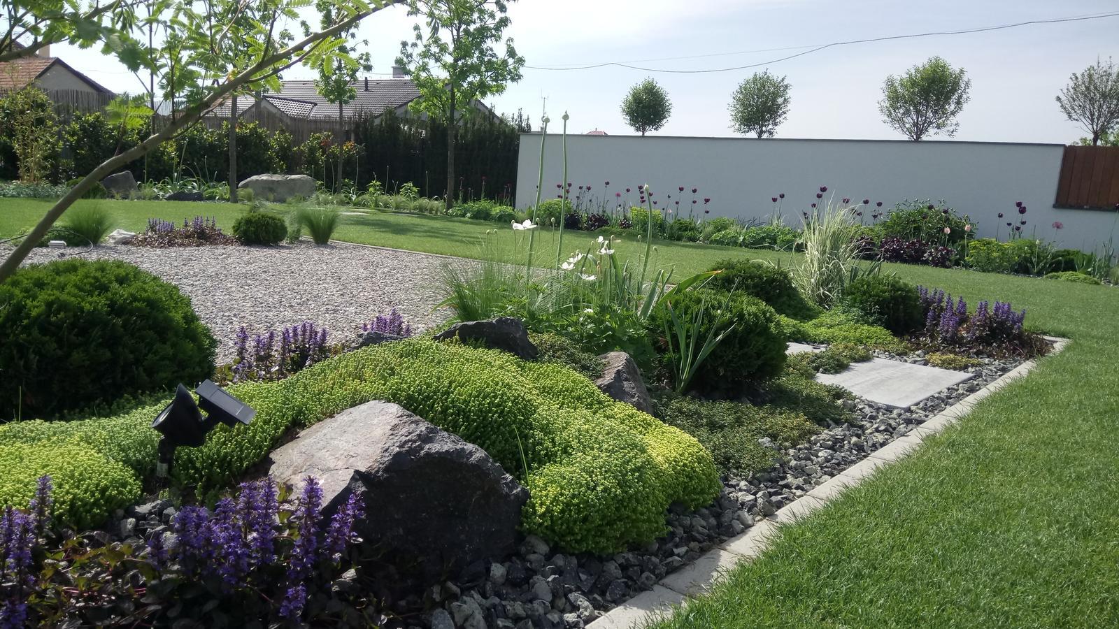 Zahrada 2017 - Obrázok č. 55