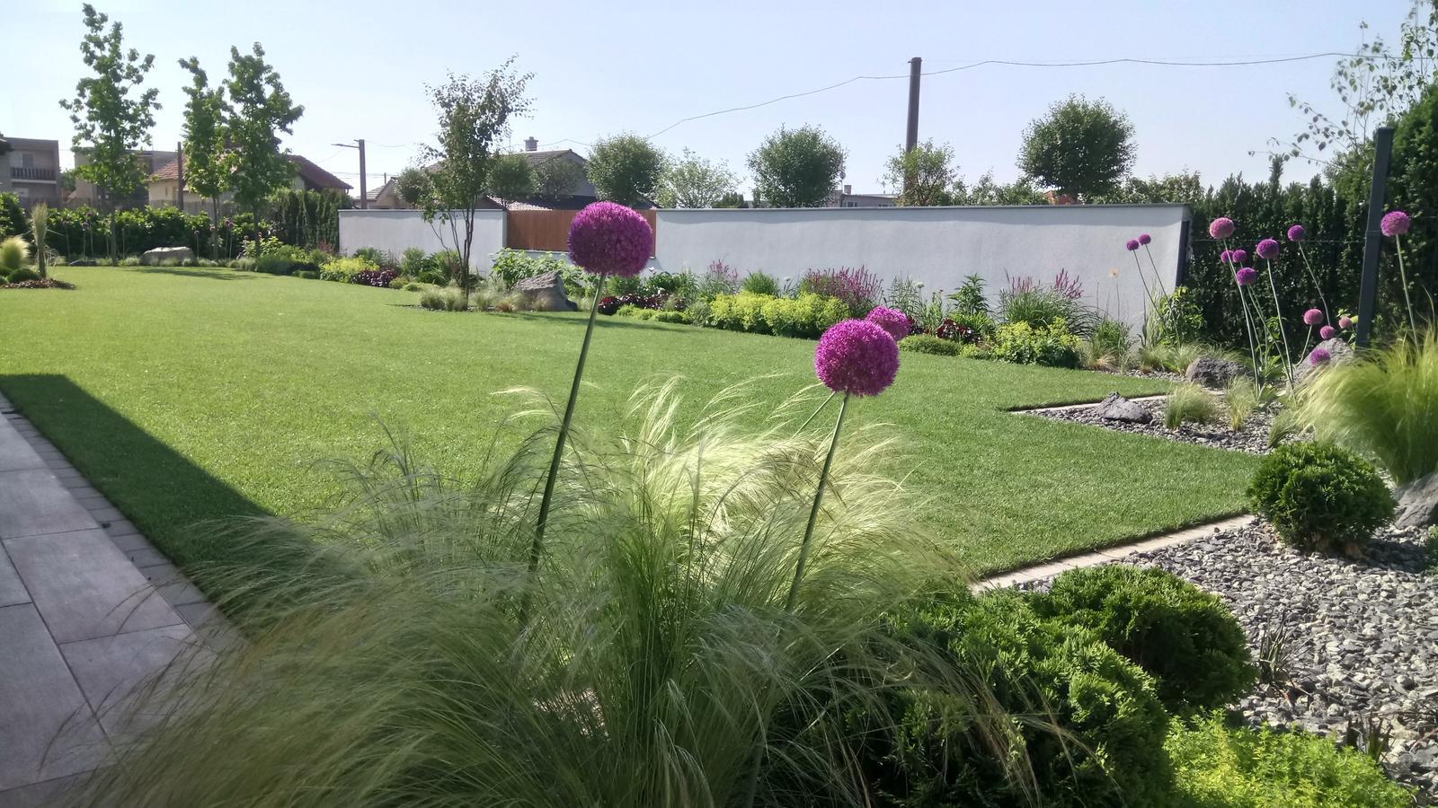 Zahrada 2017 - Obrázok č. 60