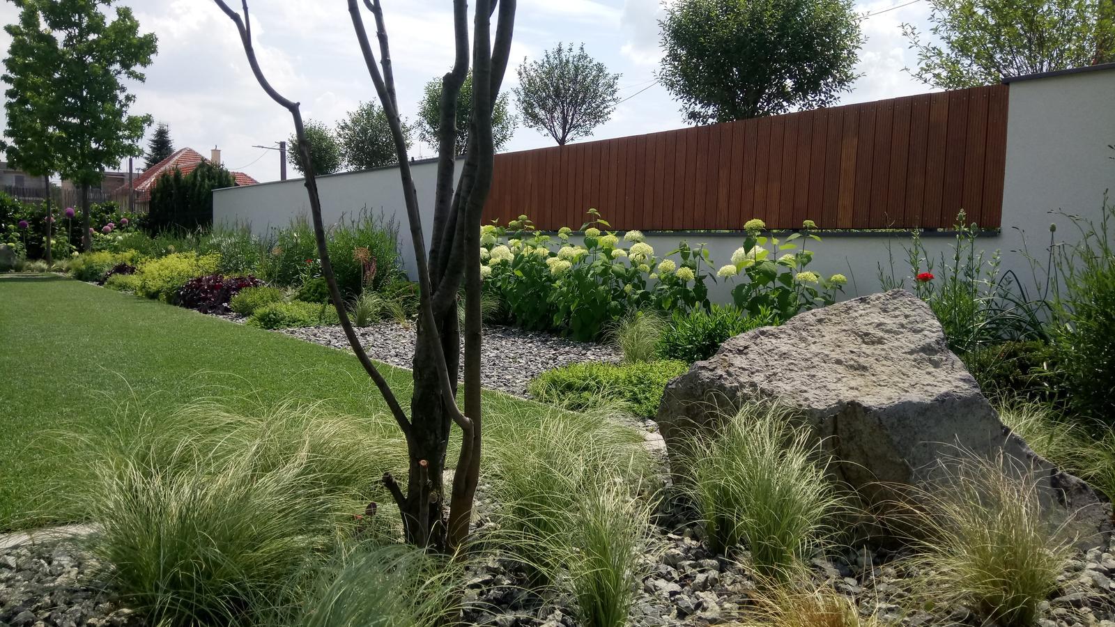 Zahrada 2017 - Obrázok č. 63