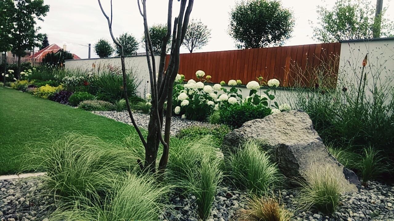 Zahrada 2017 - Obrázok č. 67