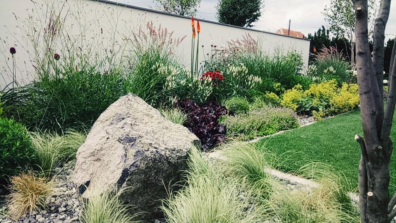 Zahrada 2017 - Obrázok č. 69