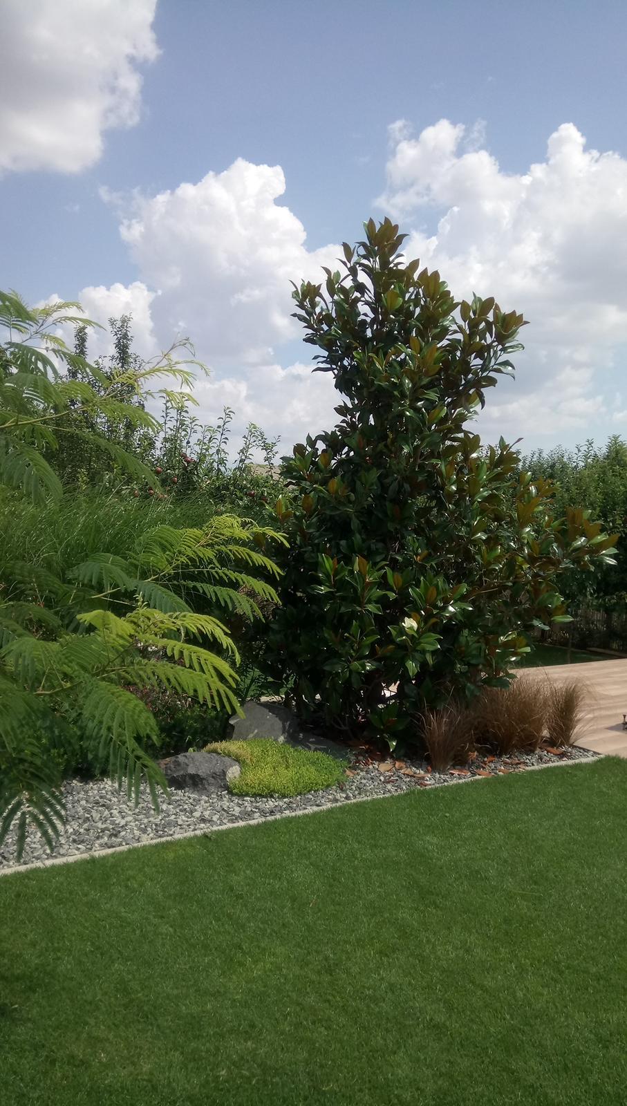 Zahrada 2017 - Obrázok č. 74